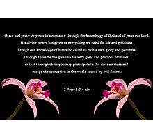 2 Peter 1:2-4 Photographic Print