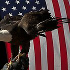 Proud Eagle - Flag Background by DeerPhotoArts