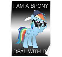 Rainbow Dash Brony Poster