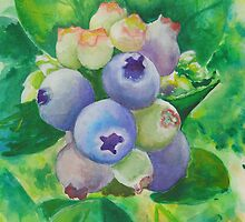 Blueberries by Dianne  Ilka
