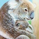 """The Koala cuddle"" portrait fine art by Sarah Trett"