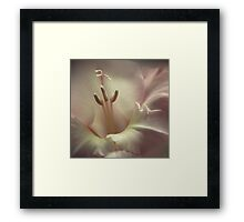 Soft... Framed Print