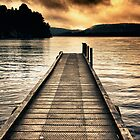 Lake Mapourika Jetty by meredithnz