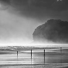Piha Evening by meredithnz