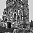 Donnington Castle HDR by James Taylor