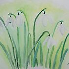 Snowdrops by Monika Howarth