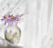 Spring blossom by cards4U
