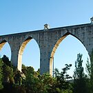 Aqueduct of the Free Waters in Lisbon by luissantos84