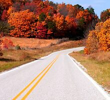 Arkansas Roadway by Carolyn Wright