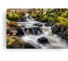 Highland Burn Canvas Print