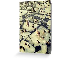 Birds on Ice II Greeting Card