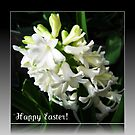 Easter Card with Dreamy White Hyacinth by BlueMoonRose