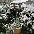 Bird Table Winter Snow by Shoshonan