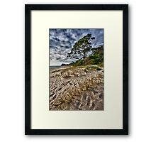 Whiritoa Sands Framed Print