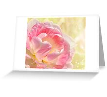 Pink and White Tulip Greeting Card