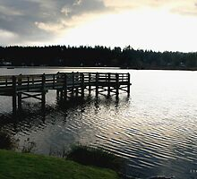 Pier At The Lake by Z Roberts