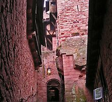 Alsace castle by Michael Brewer