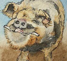 Kune Kune Pig by Lynne  Kirby