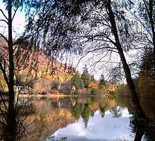 Loch Ard in the autumn by Pete Johnston