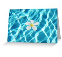 Frangipani flower in the swimming pool Greeting Card
