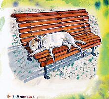 dog on bench by Ruca