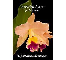 faithful Photographic Print