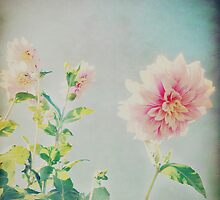 Vintage Flower by trishmcdonald
