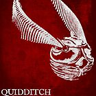 Quidditch Through the Ages by Zoe Toseland