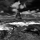Cape Schank Pulpit Rock by Andrew (ark photograhy art)