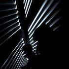 The Closet by Peter O'Hara