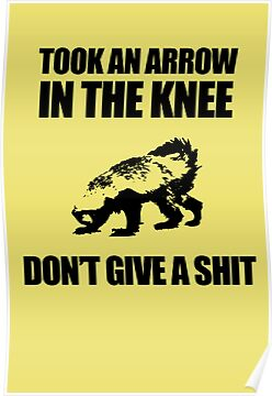 Arrow In The Knee - Honey Badger Don't Give A Shit by jezkemp