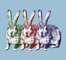 Colorfull Bunnies Kids Clothes