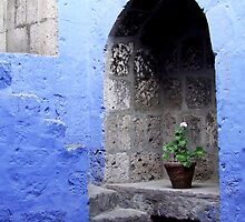 Blue Arch by Trudi Skinn