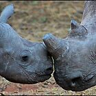 Mother and child! by Greg Parfitt