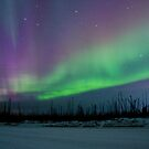 Ice Road Auroras by peaceofthenorth