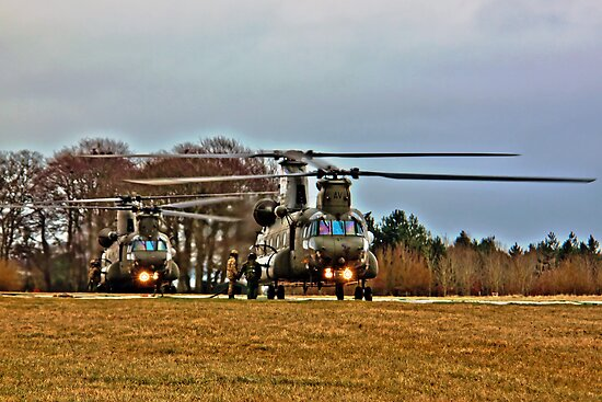 Two Chinooks by Doug McRae