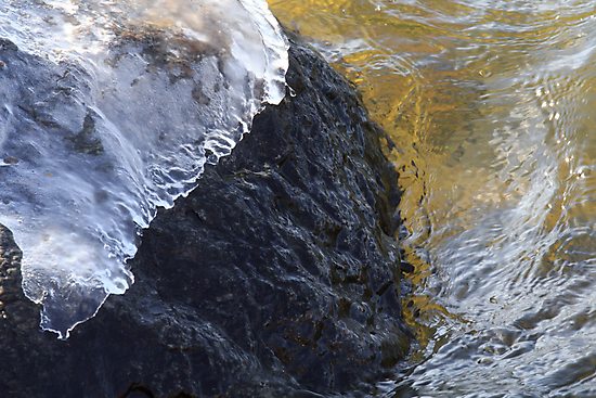 Ice Cap by Lynn Wiles