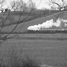 Steam in a Kentish field by NowhereMan