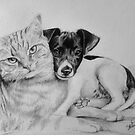 Two Friends, Cat and Puppy portrait by Felicity Deverell