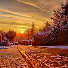 A Touch Of Frost - HDR by Colin J Williams Photography