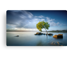 Zen Light Canvas Print