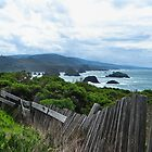 Mendocino Coast Fence by LadyEloise