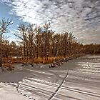 Brokenhead River Tracks by Vickie Emms