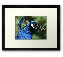 The Blue King Framed Print