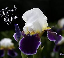 Iris ~ an Elegant Thank You by SummerJade