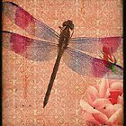 Dragonfly 5 by CalicoCollage