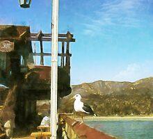 Santa Barbara Pier by Rhonda Strickland