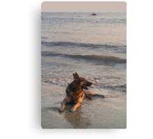 German Shepherd in the Surf Palolem Canvas Print