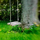 Swing on the tree by Jason Dymock