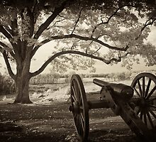 Still on guard at Devil's Den - Sepia by ©  Paul W. Faust